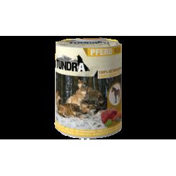 Tundra Caballo