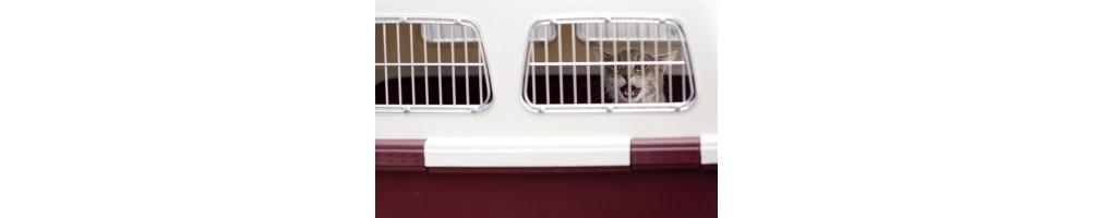 Transportines y puertas para gatos